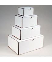10 - White Cardboard Boxes EVE-4211-